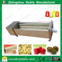 Hot sale in India Australia Canada Pakistan Nepal spray home vegetable washing fruit processing machine