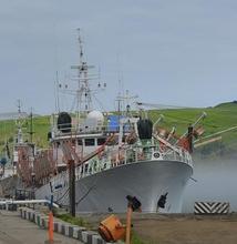 Sale Fishing Vessel - 1997 Ex Tuna Longliner