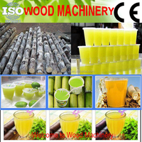 Commercial mini sugar cane juicer mill for sale, machine juicer extractor sugar cane juice china