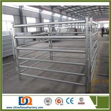 sheep/cattle/buffalo/bull/bovini/cow / paddock fence/farm gates