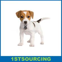 Mini Digital Pet Camera 720P Mini Pets Video View Collar Camera to Record Your Pet Activity