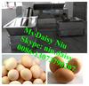 automatic egg cleaning machine/egg washing machine/egg washer machine