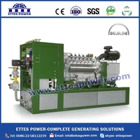 MAN Methane gas Natural gas Power Generator with CHP System from 63kW to 555kW