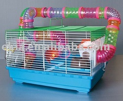 Iron pet cage for hamster