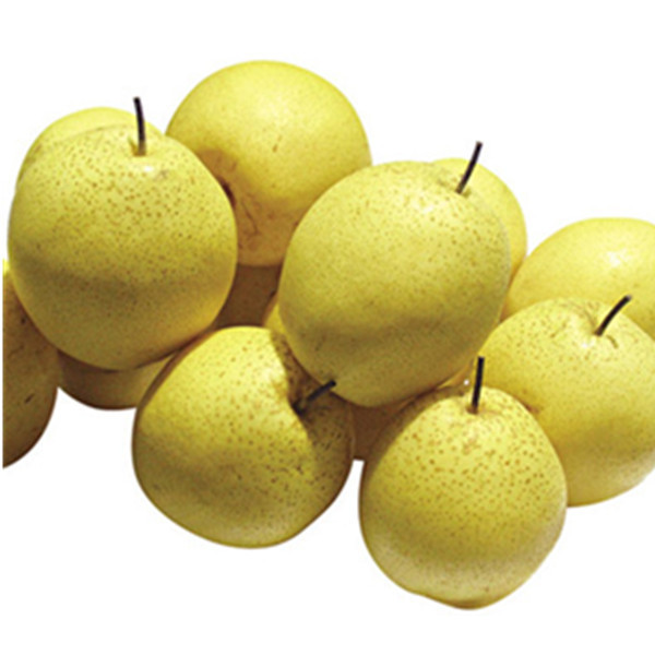 Best Quality Spray Dried Pear powder /Spray dried pear juice powder
