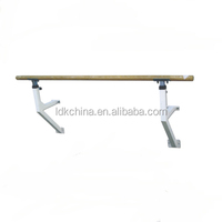 Professional /environmental protection /Indoor excercise gymnastic bar
