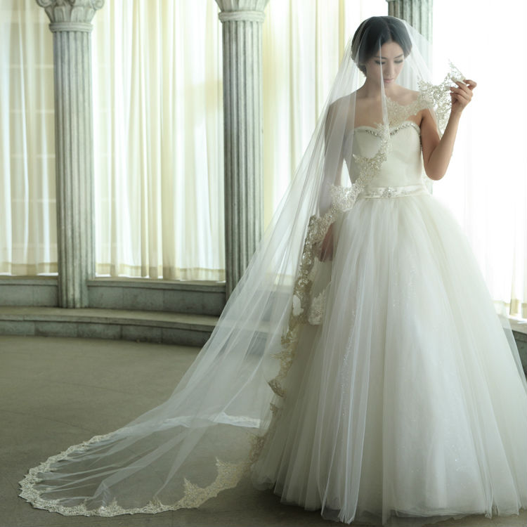 wedding veils wedding dress with champagne colored long wedding veil