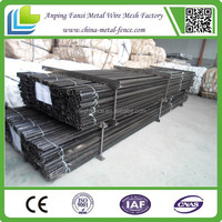 Black painted Y style steel fence posts for sale