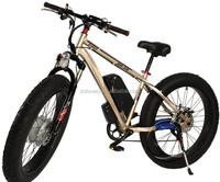 NEW hot selling alloy suspension 350w brushless hub motor high power electric dirt bicycle