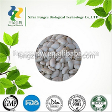 High quality White Kidney Bean Extract powder.high quality White Kidney Bean Extract,Phaseolin