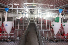 animal automatic feeding system for pig farm