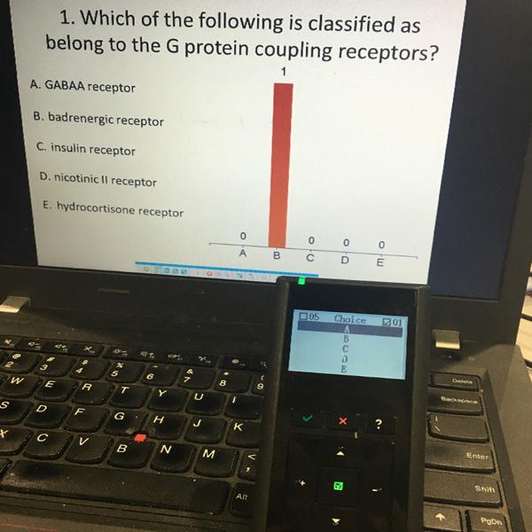 wireless voting system
