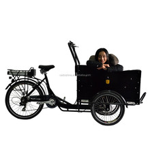 CE best price china 3 wheel electric cargo dutch bike for sale wich cabin 2015