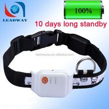 Long life battery IP67 waterproof mini pet gps tracker / tracking for dog LDW-TKP19E