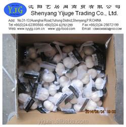 2015 high quality fresh garlic price