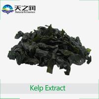 Kelp Extract Powder / Thallus Laminariae Extract / Fucoidan, Fucoxanthin, Organic Iodine