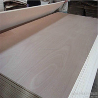 Factory direct sale plywood for furniture, construction, packing