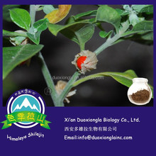 Manufacturer supply high quality Ashwagandha Extract 1%-5% withanolides for sale