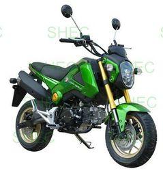 Motorcycle passenger enclosed 3 wheel motorcycle
