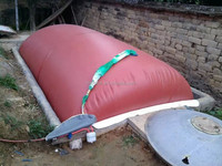 Hannover high quality mini biogas plant for small farm waste treatment easy install