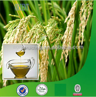 good quality rice bran oil price in india