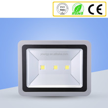Cheap price ip65 outdoor 160w 55w led flood light from manufacturer China