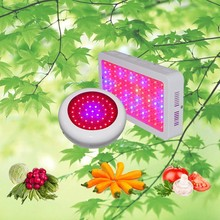 Integrated Led Grow Light Agricultural Greenhouses Used Sale