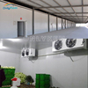 walk in industrial cold fridge for meat
