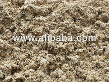 Dried Pineapple Pulp for Cattle Feed