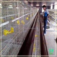 best selling product chicken farm equipment steel metal multi-tier chicken coops for laying hens big bird cages