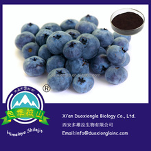 Best selling blueberry powder bulk / blueberry extract powder in food grade