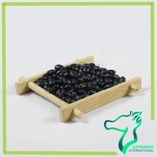 High Quality Black Kidney Bean, Black Matpe, Small Black Bean