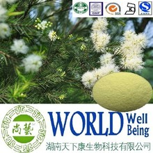 Hot sales Melaleuca alternifolia extract/Ratio 10:1 20:1/Cure gout factory supply