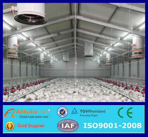 design modern chicken farms poultry house shed farm design