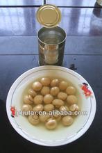 Chinese Canned mushroom whole slice in brine