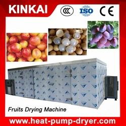 Efficient and Uniform Drying Hot Air Fruit and Vegetable Dryer Machine (Tray type)