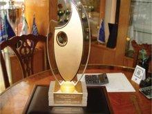 Acrylic Artist Award