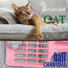 clay ball shape cativated carbon bentonite cat litter production