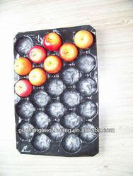 Fresh Apple Fruit Packaging