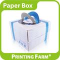 Diseño cuadrado pastel de caja de embalaje de papel
