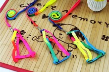hot new products for 2015 /pet product/rainbow color adjustable dog collor and dog leash
