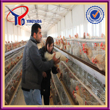 2014 hot sale bird battery cage for chicken poultry farm