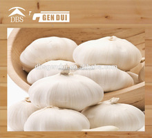 pure white garlic bulk pickled garlic bulk pickled garlic