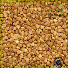 Exporting and Manufacturing Various High Quality Organic Non-GMO Buckwheat Serials Products
