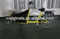 two wheel Cargo Bike UB9015/bakfiets/Nexus 7 speeds