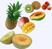 Frozen Tropical Fruits (mango, pineapple, papaya, lychee, avocado and lemon)
