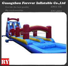 2015 giant inflatable water hippo slide