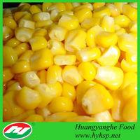 Exporting Freezing Sweet Corn Kernels