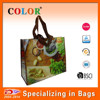 Factory direct Recycle PP woven polypropylene grocery bag/PP non woven bag with custom design and Top Quality
