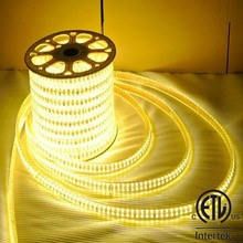 hot sale new design double line LED waterproof ip67 strip flexible led light smd 5050 led lights strip led flashlighting